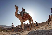 Petra Desert Marathon / http://www.marathontours.com/index.cfm/page/Petra-Marathon-and-Half-Marathon/pid/13166
