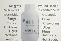 Neem For Healthy Pets.. / Neem is a bio pesticide, when applied topically it repels fleas and mosquitoes or kills them naturally and has absolutely no harmful side effects. To protect your pets, take a few drops of neem oil in your palm and rub it all over their body. By putting a few drops of neem oil in their ear will prevent an itchy ear, apply this every two to three days during the warmer season. You can also mix a neem capsule in your dogs food twice a week to give them maximum protection.