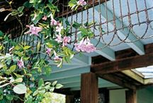 Csináld magad! - kert/Garden DIY