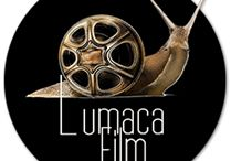 """'Lumaca Film' / """"Lumaca Film is an independent film production company founded by Francesco Zucchi and Lu Pulici in 2013 in Pennabilli, a small village in Emilia Romagna, Italy."""""""