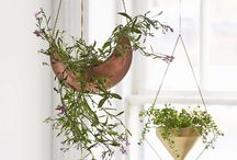 Planters / Designed objects for indoor plants