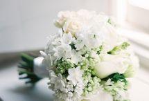 white bouquets / by Mallory Joyce Design