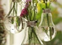 Fabulous Vases