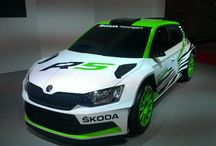 The New ŠKODA Fabia R 5 concept car / A concept of the new rally car developed in Mladá Boleslav was presented to the public for the first time at the 2014 Essen Motor Show from November 29 to December 7.