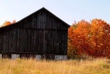 country barns / by Tiffany Baker