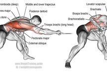 Gym Tips - Back