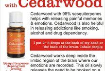 Essential Oils: Addictions!