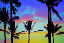 Hawaii / Celebrating the Hawaiian Island and showcasing what they have to offer.