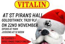 Christmas fun dog show 22/11/15 / Fun dog show