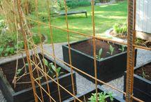 balkong och trädgård