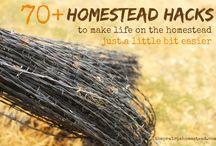 Homestead / Hacks