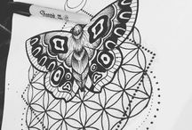 drawing ✏