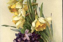 Akvarell virágok - watercolor flowers / Minden akvarell technikával készült virágminták