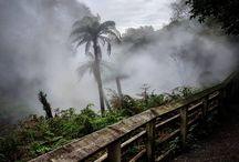 Rotorua Day Trip