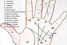 Palm Reading, Palmistry, Astrology / There's no need to read between-the-lines when you learn the principles of palmistry... the lines on a person's hand are a chart of the individual's life for the trained eye to follow and the informed mind to interpret. It takes many years of study to become an expert at palm reading but by mastering this information anyone can soon learn to be a party palmist. http://www.astrokismet.com/palm-reading/