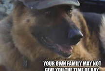 Pets are family. / Animals that are family
