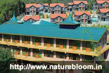 Nature Bloom Resorts