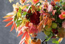 jardins, fleurs et bouquets / jardins de rêve, fleurs et déco