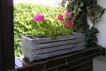 Nápady pro zahradu / záhonky, kytky, chodníky