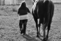 Love Horses / by Nichole Herring