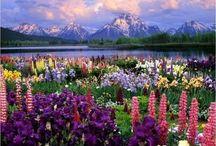 Beautiful scenery<3