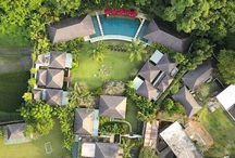 Balinese Tropical