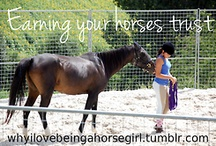 Being Human through Horses