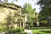 River Stone Ranch Apartments- Austin / Welcome to luxurious River Stone Ranch, a gated Mediterranean resort-style apartment home community for those who expect the best. (512) 229-1793