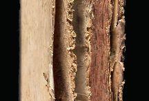 APADRINAT! Dissertatio de generatione fungorum, ad ... Joannem Maria Lancisium ... / Marsigli va servir a l'armada de l'emperador Leopold I fins el 1704 i va escriure en múltiples temàtiques. Al 1712 va fundar l'Accademia delle Scienze dell'Instituto di Bologna i el 1722 va ser elegit membre de la RSL. En l'obra que presentem es descriu estudis dels fongs i parasitaris, molts il•lustrats al final en gravats calcogràfics.  La seva Dissertatio està dedicada al destacat físic italià Giovanni Maria Lancisi. El nostre ex. presenta el senyal identificador de la família Salvador.