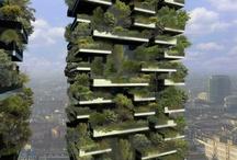 Urban Farming / by Elsa Garnica