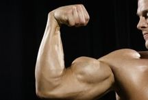 my muscle motivation