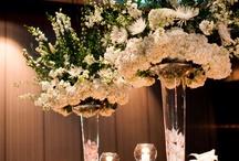 Wedding: Florals / by Aida Correa