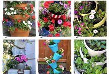 Gardening Ideas & Flowers / gardening / by Phyllis Hodge Bright