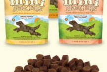 Our Furry Friends / Natural Pet Health