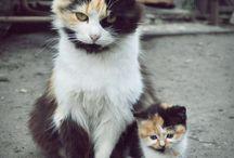 mommy ,daughter days / by Kristy Olivas