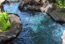 Natural sweeming pool