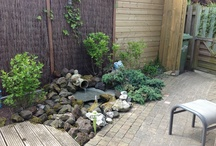Tuin / Onze achtertuin