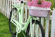 I want to ride my bicycle, bike or tricycle ...