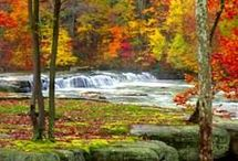 Fall is camping time / by Becky Mayfield