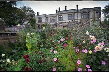 Thornbridge Hall / Thornbridge Hall wedding