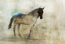 Paarden en andere dieren