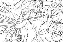 kleurplaten birds