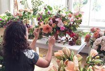 florist insp