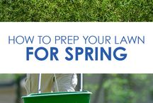 Lawn & Garden Tips / Advice, tips and how-tos for a beautiful yard, back and front.