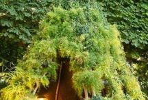 tuinhuisjes boom en speelhutten