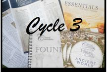 CC cycle 3
