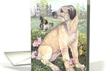 """Irish Wolfhounds / The tallest of all breeds of dogs, the Irish Wolfhound truly deserves its nickname as a Gentle Giant.  Once living among royalty - kings and nobility, used as war and guard dogs and hunting with it's keen sense of sight with an interesting motto: """"gentle when stroked, fierce when provoked"""".  Enjoy greeting cards and other images featuring this gentle giant."""