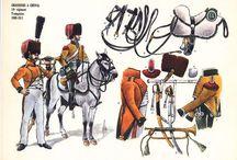Napoleonic Chasseurs a cheval de la ligne