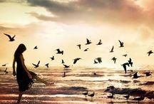 Beautiful images