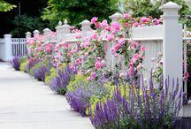 Trädgårdar & blommor